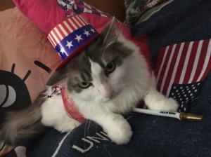 Patriotic *ANNIE*